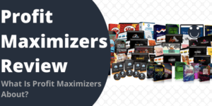 What Is Profit Maximizers About?