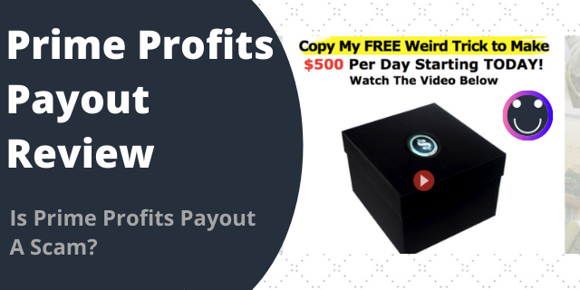Prime Profits Payout Review