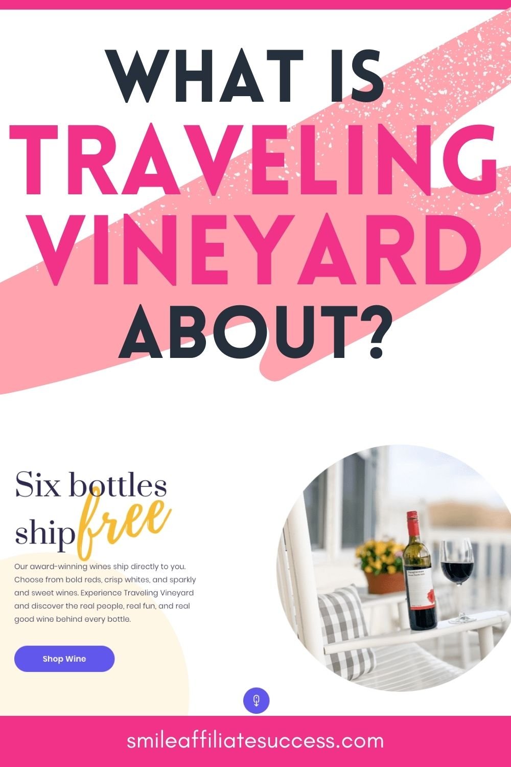 What Is Traveling Vineyard About?