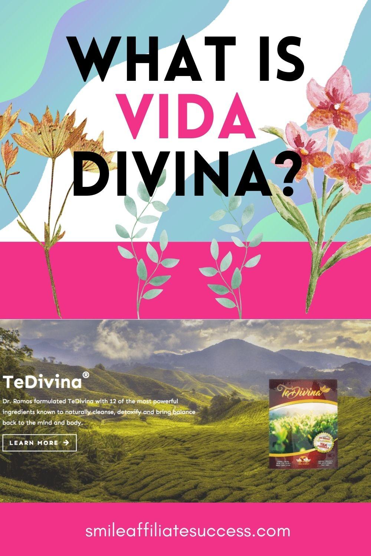 What Is Vida Divina?