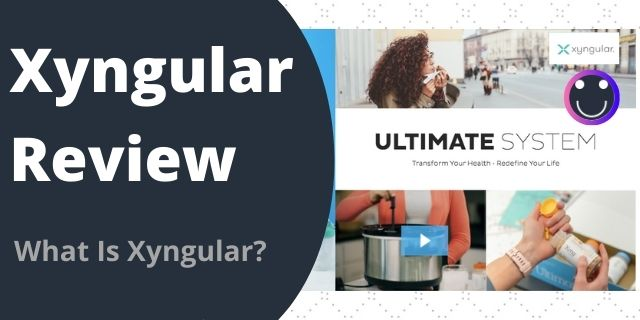 What Is Xyngular?